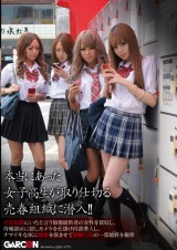 School Girl Hookers