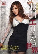 The World of Erika Kitagawa
