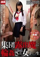 School Girl Raped by Flashers