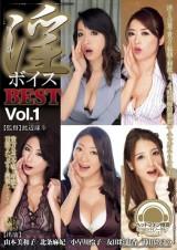 Erotic Voice Best Vol. 1