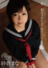 Confined Schoolgirl Pet